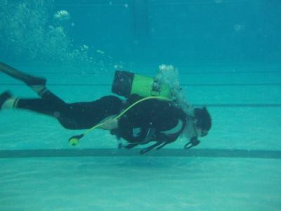 Campeonato comunidad valenciana de buceo deportivo que se for Curso mantenimiento de piscinas comunidad valenciana
